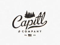 Capitl & Co (Revisions)