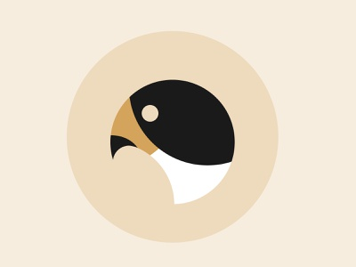 Falcon Illustration circle logo minimalist falcon logo icon design bird illustration illustration flat peregrine falcon icon falcon illustration falcon