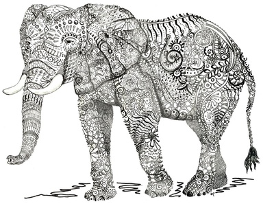 Ornate Elephant design patterns illustration drawing sketch