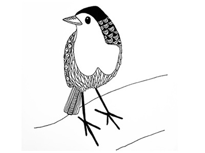 Robin Red Breast bird christmas design patterns illustration drawing sketch