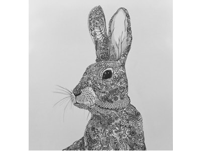 Proud hare pattern art design hare pen and paper sketch line-drawing