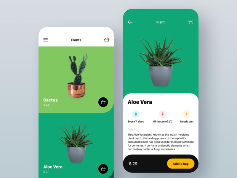Aloe Vera plants plant buy green aloe cactus flower apple ios mobile app design ukraine ux ui lviv