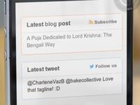Blog and twitter widget in Milaap footer