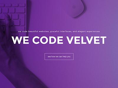 Velvet Splash Screen purple coding website homepage