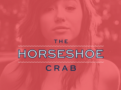 Horseshoe Crab Lockup horseshoe crab company logo lockup sweet sans