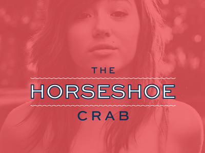 Horseshoe Crab Lockup