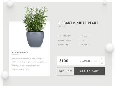 Product Page buy ecommerce clean organic plant typography cart details product