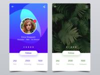 Profile & Gallery Showcase UI
