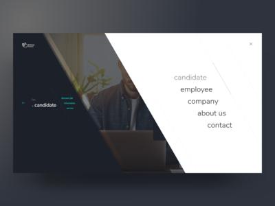 Schwan Website Concept