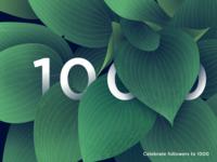 Celebrate 1000 Followers