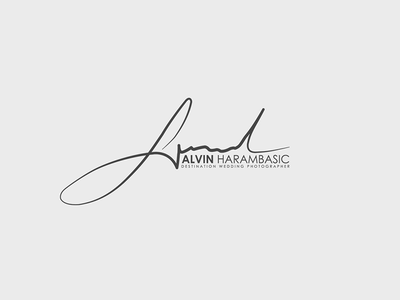 Alvin Harambasic * Destination Wedding Photographer photographer photography photo wedding design logo
