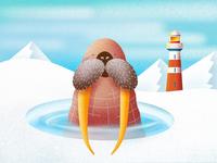 (58/100) Walrus