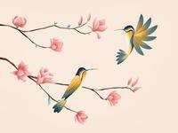 (74/100) Humming Birds