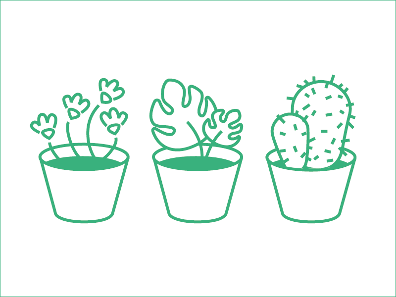 Plants Icons for web app miniatures monstera succulents cacti lineart linear minimal green icon icons plants