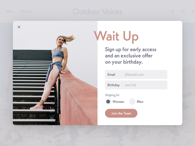 Ov Email Capture web signup form exit intent email capture