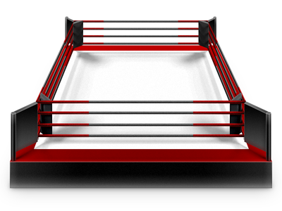 Ring Shot arts sport boxing ring