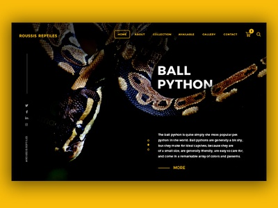 Reptile Homepage shop banner website web homepage snake reptile python
