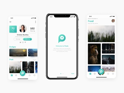 Pixels - Social Photography app ios 12 ios android 2d icon branding logo product mobile interface design app ui vector