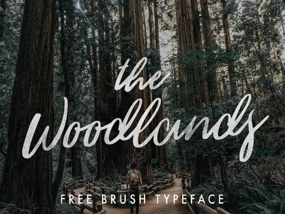 The Woodlands - Free Brush Typeface script font brush font free typeface free font script fonts brush typeface freebie free