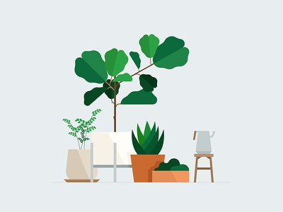 Designers interior plants vector geometric interior pots leaf leaves trees tree illustration plants