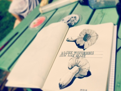 Mushrooms sketchbook mushrooms sketch pen ink illustration drawing