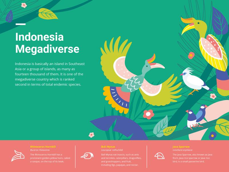Indonesia Megadiverse - Birds