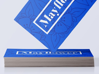 Identity of Flowers typography white high contrast monoline blue mayflower