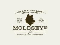 MoleseyCo Logo Update