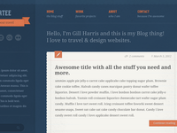 Tumblr Style WordPress Theme
