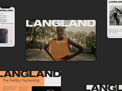 LANGLAND agency website design ux agency website toyfight ui