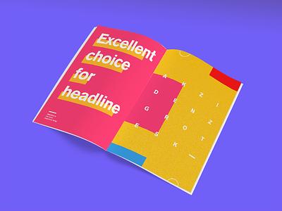 Typographic specimen - Akzidenz-Grotesk specimen print editorial typographic graphic font design poster
