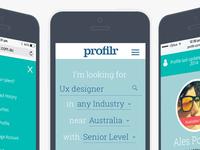 Profilr web application (Beta)