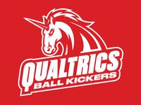 Qualtrics Ball Kickers