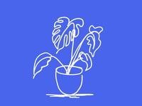 Plant Contour