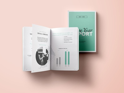 Epic Five Year Report editorial data visualization infographics graphics booklet color typography print visual