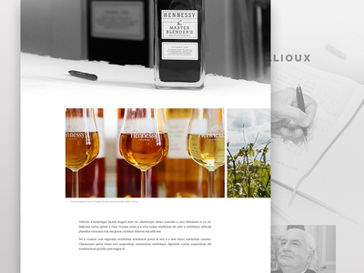 Hennessy Campaign #2 carousel gallery image text type interface ui visual design graphic design bold typography