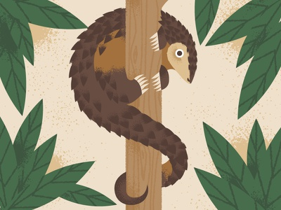 Pangolin endangered animals world pangolin day climbing tree pangolin
