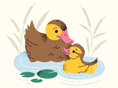 Mother Duck duckling chick mother pond bird ducks