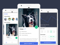 Pet Adoption App Concept