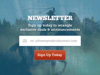 Newsletter Wrangler