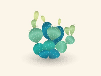 Cactus desert nature plant green vector illustrator noise cactus