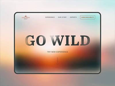 Retreat Aurora Webpage studio visual design ui desktop design uitrend aurora animation landingpage webdesign