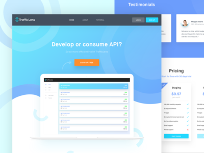 Traffic Lens _ Homepage Redesign fresh typography vector illustration colors uidesign blue interface dashboard experience clean web homepage user-experience design app user-interface wireframe ui ux