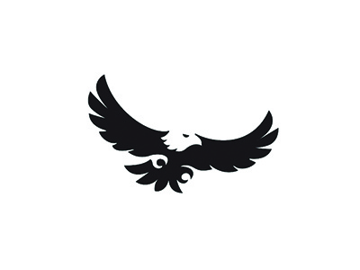 The Raptor Center talons wings baldeagle bird of prey bird raptor space negative eagle logo