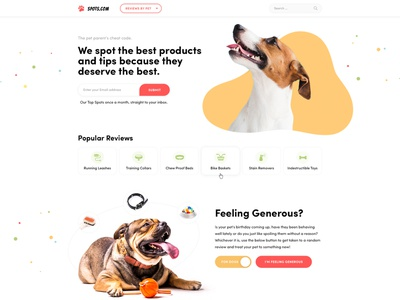 Products reviews for pets wordpress clean illustration corporate landing webdesign web design ux ui
