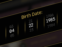 Birth Date Selector
