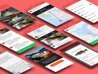 FishHunter (Bluetooth Sonar) App ui ux wireframe flat onboarding map mapping navigation community chat lightbox