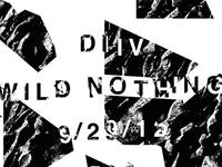 DIIV & Wild Nothing