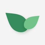 Leafnet Studio