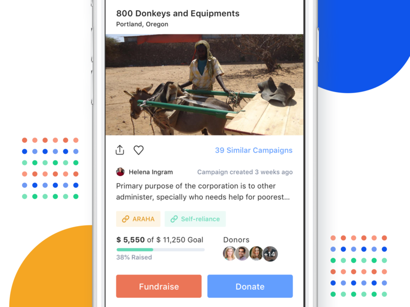 Online Fundraising - iOS App - Fundra real project clean feeds donors mobile design ios app dashboard fundraising nonprofit fundraise budget campaigns donations user interface progress bar track saas affordance signifier usability